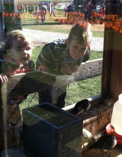 Oren and Brayden checkin' out the chicks.