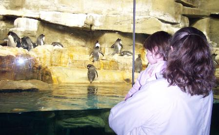 The penguins were my favorite. (March 13, 2006)